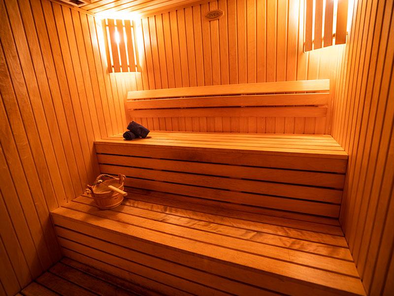 Premier Spa Sauna